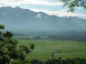 The rice paddies and Yedagon Mountains east of Oo Yin Pariyatti Monastery..